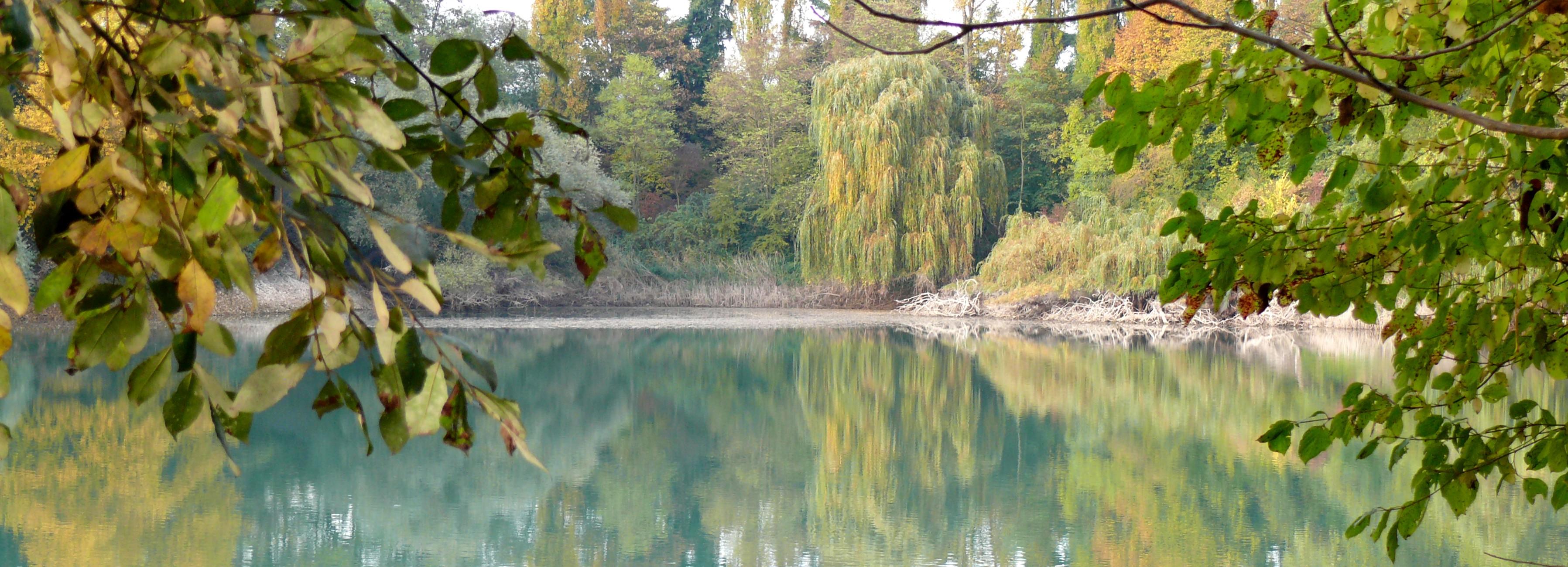 Umweltschutz heißt: Renaturierter Baggersee der Kiesgrube Leimig bei Koblenz - Umweltpreis für Erdwärmegewinnung